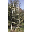 Baldwin Wooden Apple Ladders